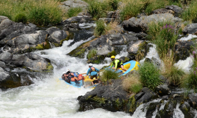 Oregon's Rogue River a fun, family friendly & Wild